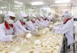 Tuyển trực tiếp 10 nam và 10 nữ đầu tháng 10 tại nhà máy TÂN ĐÔNG DƯƠNG