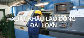 don-hang-xkld-dai-loan