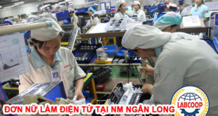 Đơn hàng nữ làm điện tử tại Nhà máy Ngân Long