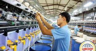 Đơn hàng nam làm thao tác máy dệt tại nhà máy Tụ Phưởng