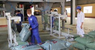 Đơn hàng nam làm sản xuất thức ăn gia súc tại NM Giai Khánh, Đài Nam