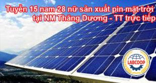 Tuyển 15 nam 28 nữ sản xuất pin mặt trời tại NM Thăng Dương