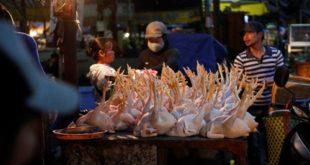 Tuyển 7 nữ làm thực phẩm tại nhà máy Thái sư phụ, Gửi form