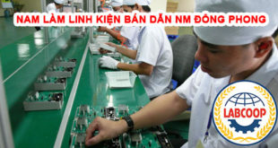 Nam làm linh kiện bán dẫn tại nhà máy Đông Phong