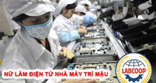 Nữ làm điện tử tại nhà máy Trí Mậu, Đào Viên