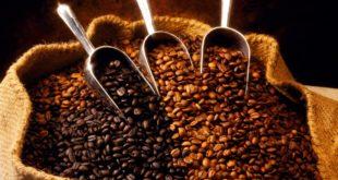Nhà máy Khai Nguyên tuyển 20 nữ làm thực phẩm cà phê