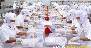 Tuyển 05 nữ làm thực phẩm, đóng gói tại NM Hòa phong