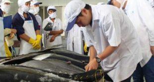 NM Nguyên Hải Hương tuyển 20 nam làm cá tại Cao Hùng