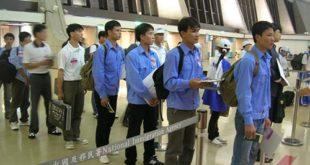 Tuyển 02 nam làm mổ lợn tại NM Đại Thụ Lâm, Đào Viên