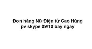 Đơn hàng Nữ Điện tử Cao Hùng pv skype 09/10 bay ngay